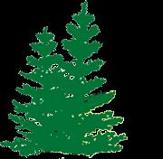 Tall Pines Resort on Nelson Lake Hayward WI